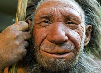 Неандертальцы